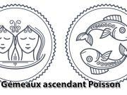 Gémeaux ascendant Poisson