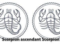 Scorpion ascendant Scorpion